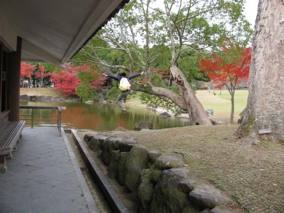 自然と調和しているのが奈良の特徴のひとつだね。