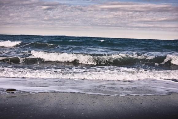 波のように寄せては返したいいおりん。