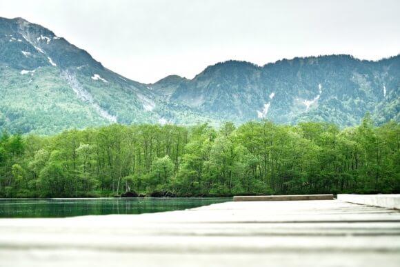 自然はオシバイとは無縁だから癒されるのかもね。